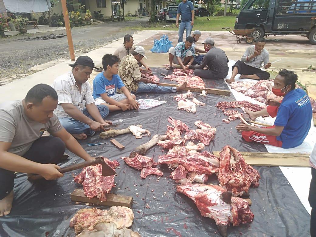Pemotongan hewan kurban